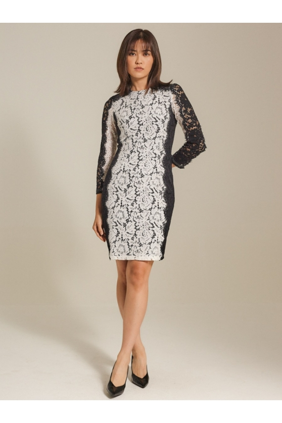 Color-block Corded Lace Dress